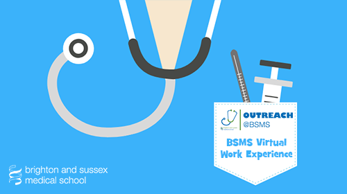 Brighton and Sussex Medical School Virtual Work Experience